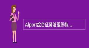 Alport综合征肾脏组织特征性的病理改变是()。