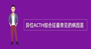 异位ACTH综合征最常见的病因是